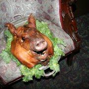 Pig Roast 2015